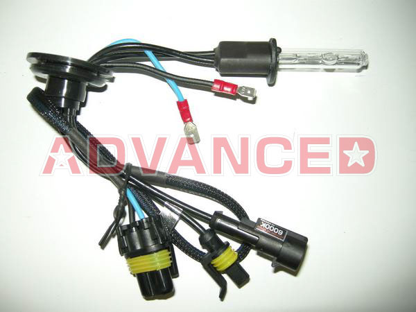ADVANCED HID MINI HID H11灯